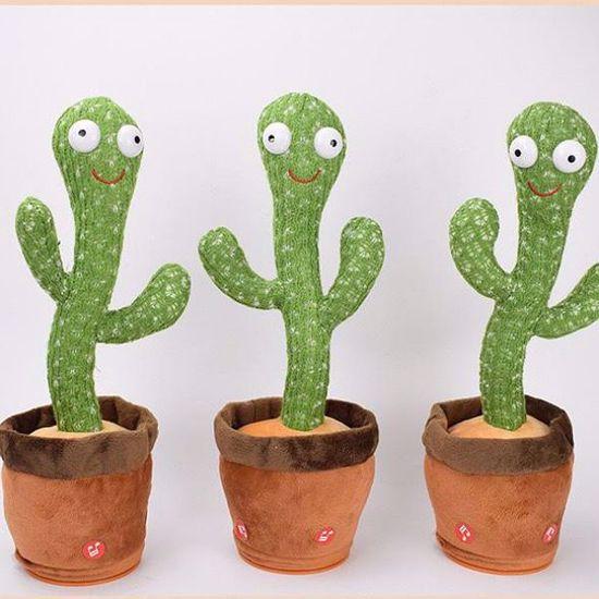 صورة Dancing Cactus